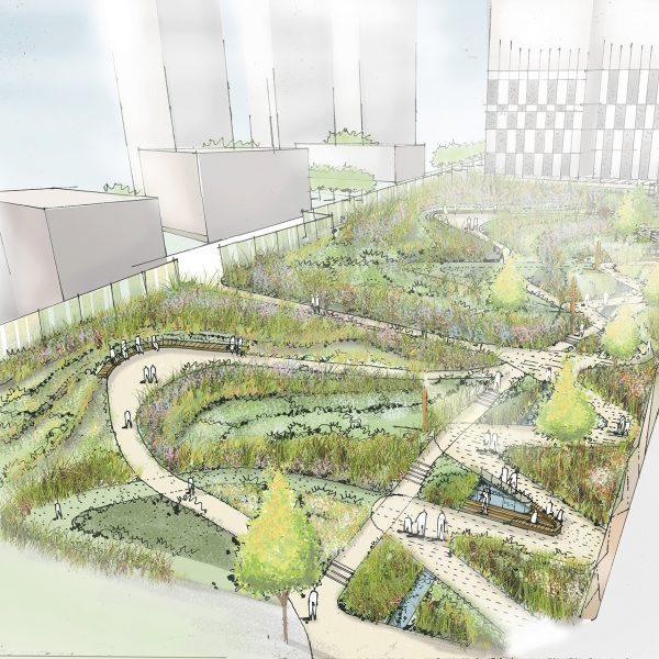 Sketch of future public garden design
